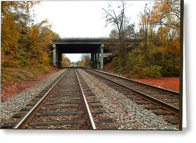 Down The Lines Greeting Card by Sandi OReilly