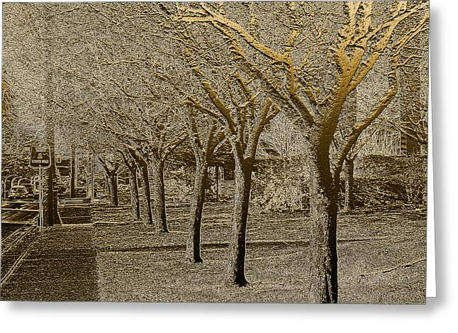 Urban Scenery Greeting Cards - Down the Street Greeting Card by Barbara  White