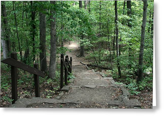 Devils Den Greeting Cards - Down The Trail Greeting Card by CGHepburn Scenic Photos