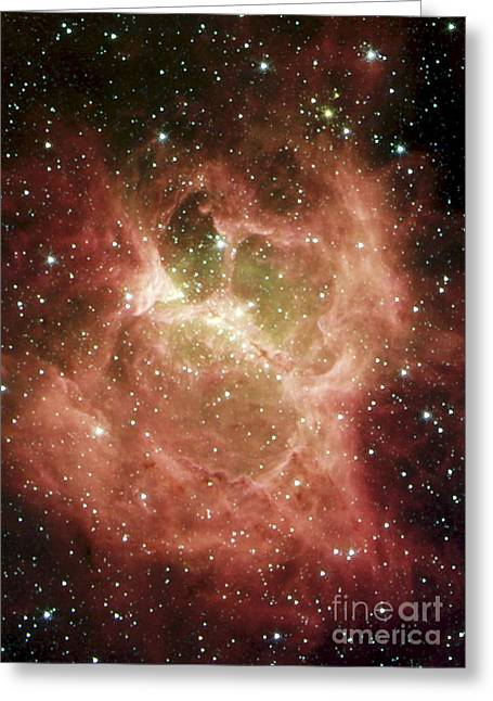 27 Greeting Cards - Dr6 Nebula Greeting Card by NASA / Science Source