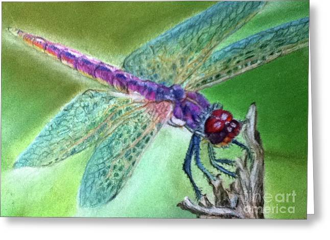 Dragonflies Pastels Greeting Cards - DragonFly crop2 Greeting Card by Teresa Vecere