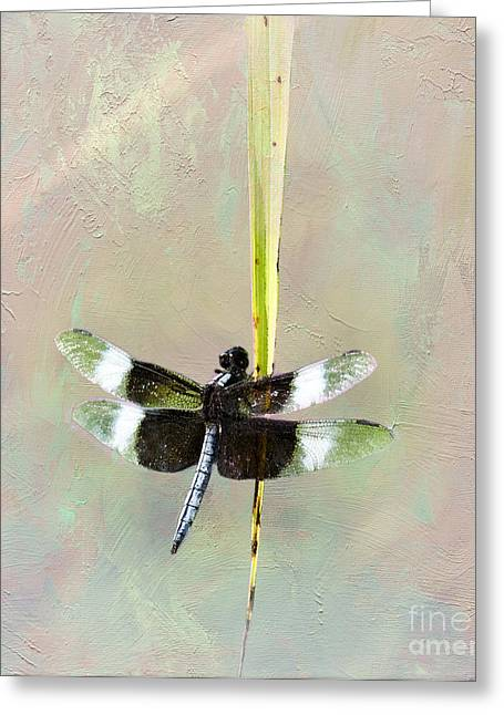 Black Widow Greeting Cards - Dragonfly Devotion Greeting Card by Betty LaRue