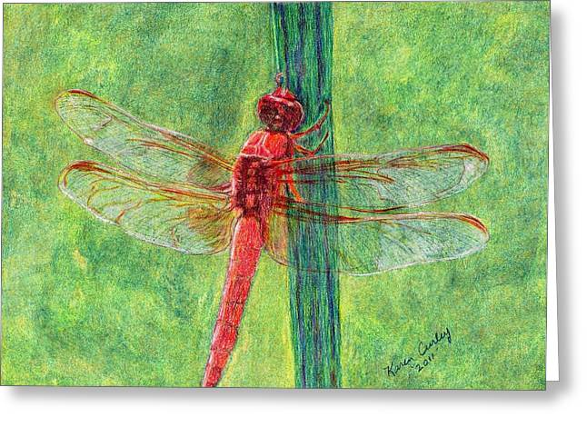 Antenna Drawings Greeting Cards - Dragonfly Greeting Card by Karen Curley