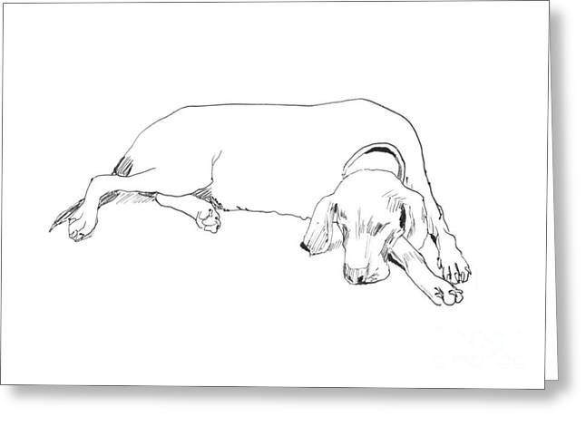 Mascot Pastels Greeting Cards - Drawing of a resting dog Greeting Card by Sofia Ugarte