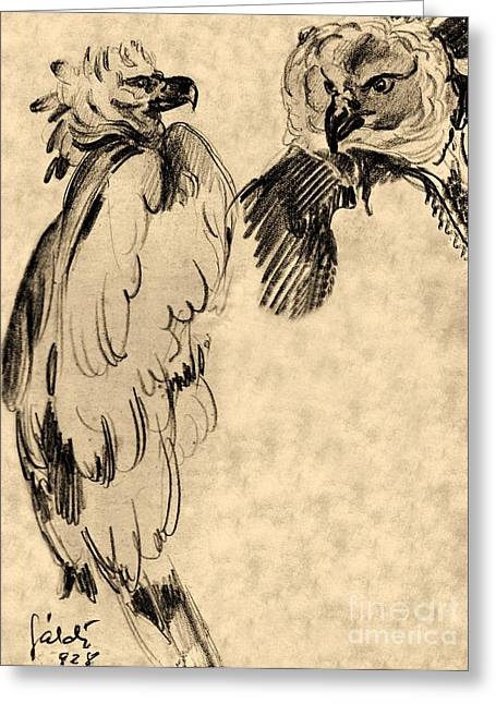 Grungy Drawings Greeting Cards - Drawing of two Eagles Greeting Card by Odon Czintos