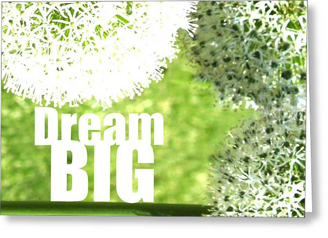 Dream Big Greeting Card by Lj Lambert