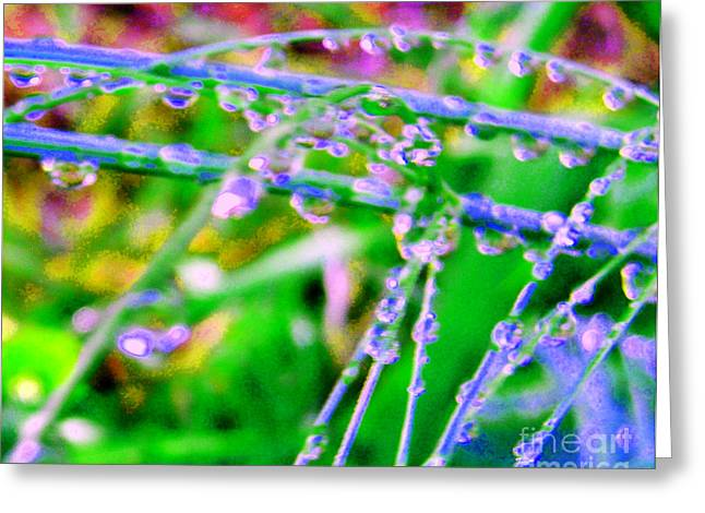 Plant Life Digital Art Greeting Cards - Dream Drops Greeting Card by JoAnn SkyWatcher