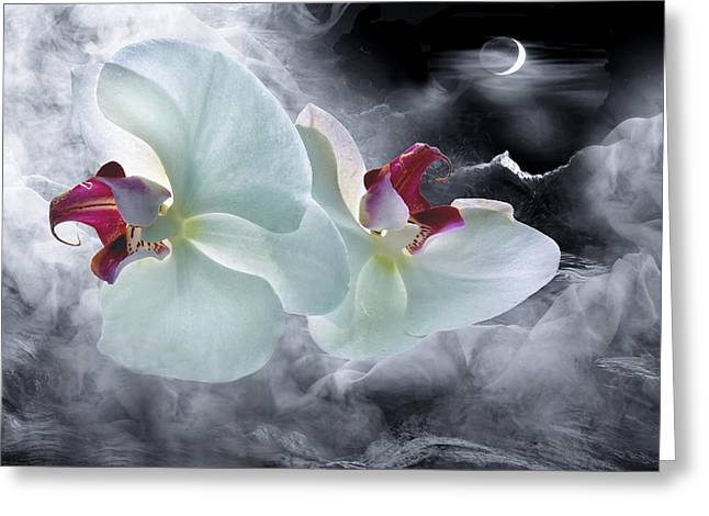 Flying Orchid Greeting Cards - Dream-Fly Greeting Card by Manfred Lutzius