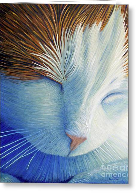 Cat Greeting Cards - Dream Within A Dream Greeting Card by Brian  Commerford