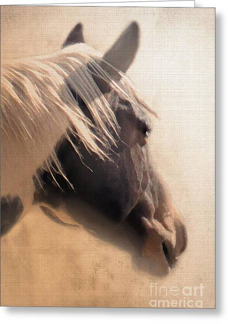 Quarter Horse Digital Art Greeting Cards - Dreaming Across the Fence Greeting Card by Betty LaRue