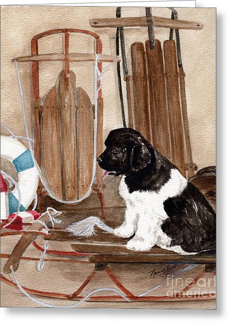 Newfoundland Puppy Greeting Cards - Dreaming of Winter  Greeting Card by Nancy Patterson