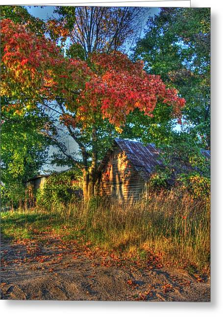 Autumn In The Country Greeting Cards - Dreams Abandon Greeting Card by Robert Pearson