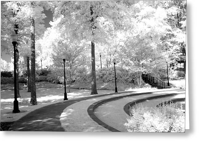 Surreal Infrared Dreamy Landscape Greeting Cards - Dreamy Black White Infrared Nature Landscape Greeting Card by Kathy Fornal