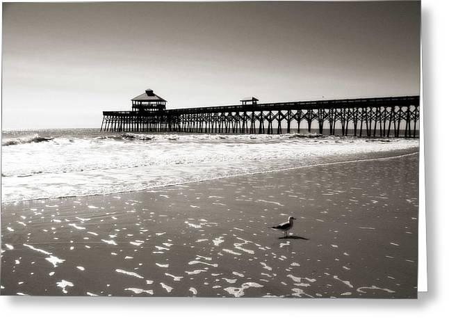 Surfer Art Greeting Cards - Dreamy Coast Greeting Card by Zarija Pavikevik