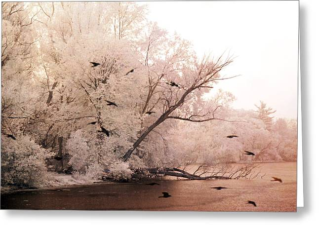 Surreal Pink Nature Prints By Kathy Fornal Greeting Cards - Dreamy Ethereal Infrared Lake With Ravens Birds Greeting Card by Kathy Fornal