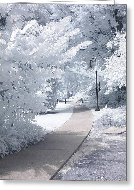 Fantasy Tree Greeting Cards - Dreamy Infrared Michigan Park Nature Landscape Greeting Card by Kathy Fornal