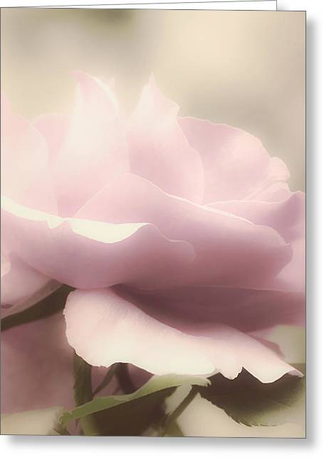 Soft Tones Greeting Cards - Dreamy Pink Greeting Card by Julie Palencia
