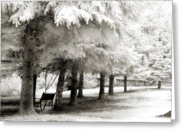 Surreal Infrared Dreamy Landscape Greeting Cards - Dreamy Surreal Infrared Park Bench Landscape Greeting Card by Kathy Fornal