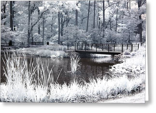 Surreal Infrared Dreamy Landscape Greeting Cards - Dreamy Surreal South Carolina Pond Landscape Greeting Card by Kathy Fornal