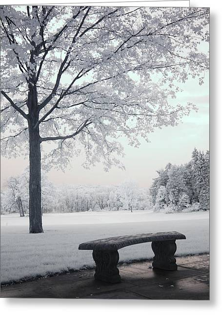 Infrared Fine Art Greeting Cards - Dreamy White Blue Infrared Michigan Landscape Greeting Card by Kathy Fornal