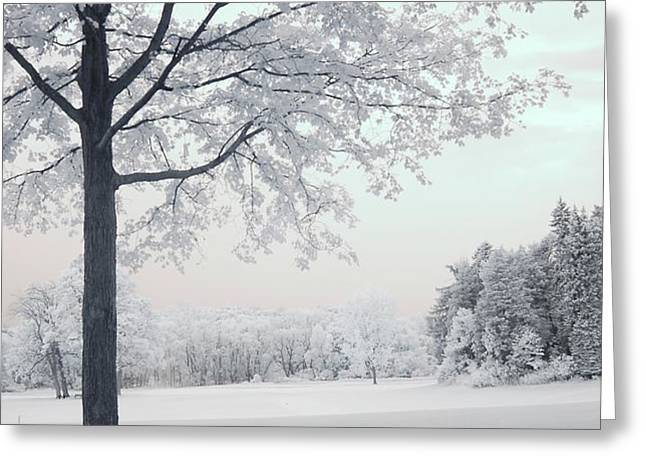 Dreamy White Blue Infrared Michigan Landscape Greeting Card by Kathy Fornal