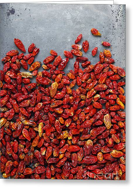 Spice Greeting Cards - Dried Chili Peppers Greeting Card by Carlos Caetano