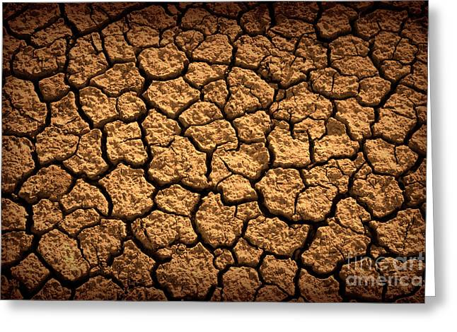 Drain Greeting Cards - Dried Terrain Greeting Card by Carlos Caetano