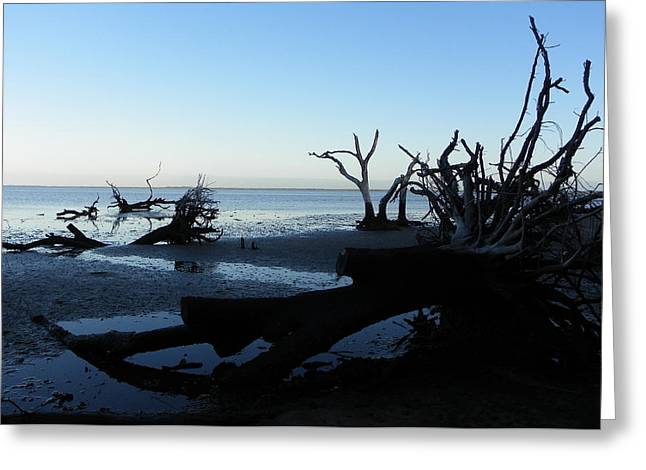 Driftwood Blues 3 Greeting Card by Sheri McLeroy