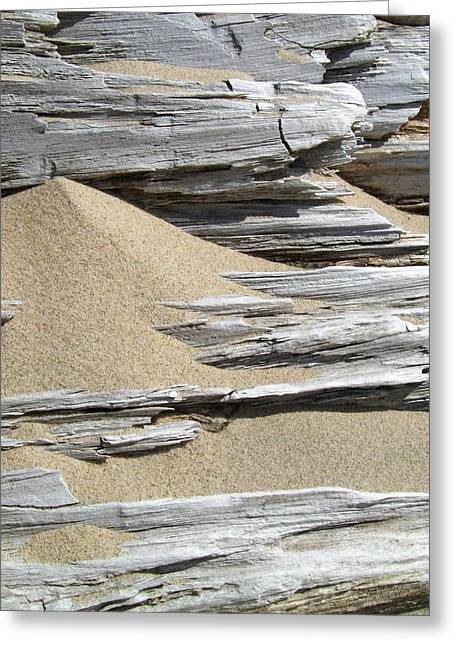 Sand Patterns Greeting Cards - Driftwood Greeting Card by Michelle Calkins
