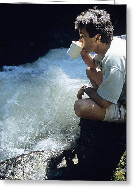 Human Survival Greeting Cards - Drinking From A Stream Greeting Card by Alan Sirulnikoff