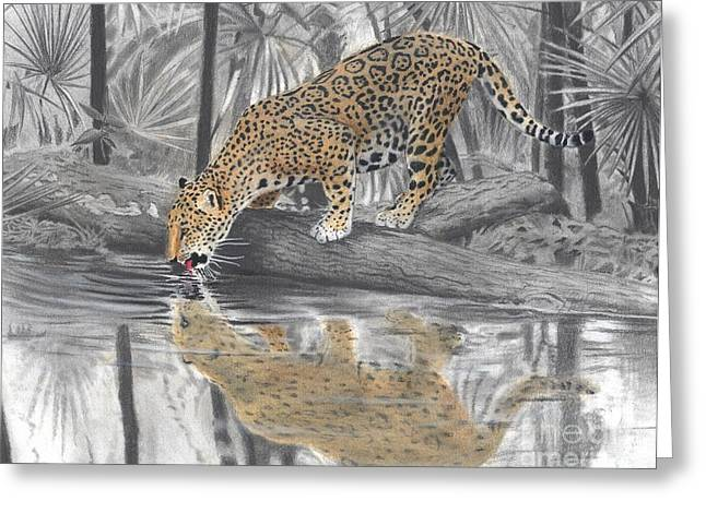 Jaguars Pastels Greeting Cards - Drinking Jaguar Greeting Card by Christian Conner