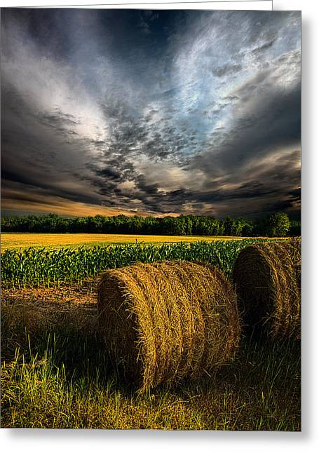 Geographic Greeting Cards - Drought Greeting Card by Phil Koch