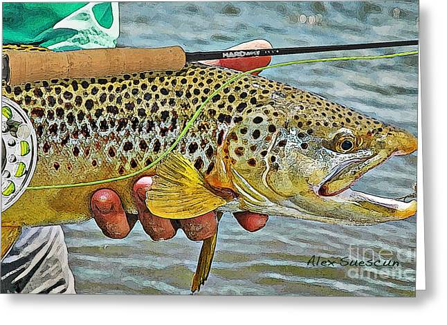Fly Fishing Drawings Greeting Cards - Dry Fly Brown Greeting Card by Alex Suescun