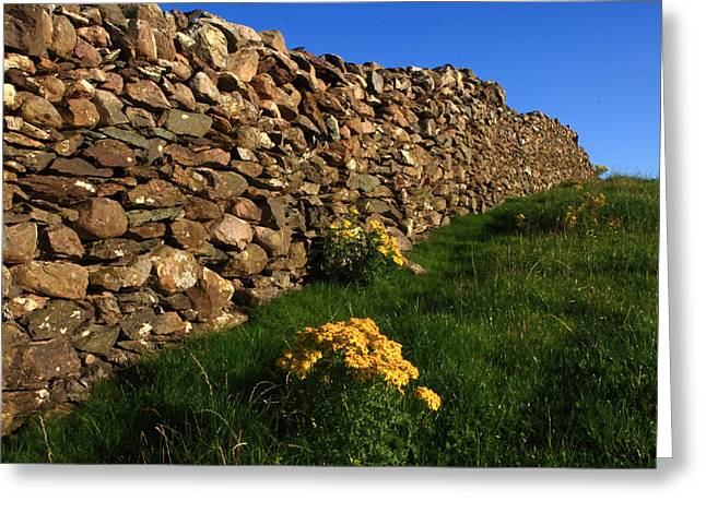 Dry Stone Wall. Greeting Cards - Dry Stone Fence Greeting Card by Aidan Moran