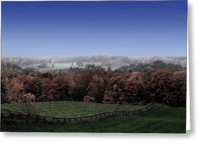 Autumn In The Country Greeting Cards - Duality  Greeting Card by Andrea Kollo