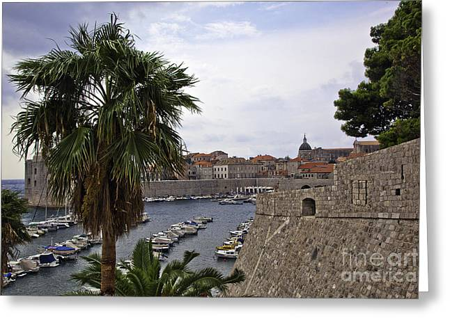 Dubrovnik Greeting Cards - Dubrovnik Overview 7 Greeting Card by Madeline Ellis