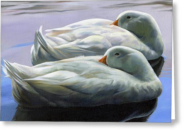 Duck Nap Greeting Card by Alecia Underhill