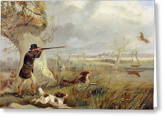 Hound Hounds Greeting Cards - Duck Shooting  Greeting Card by Henry Thomas Alken