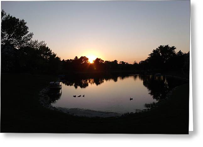 Photograph Of Peaches Greeting Cards - Duck Sunset Greeting Card by Brian  Maloney