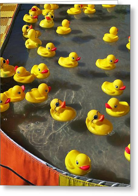Ducky Greeting Cards - Duckies Greeting Card by Skip Hunt