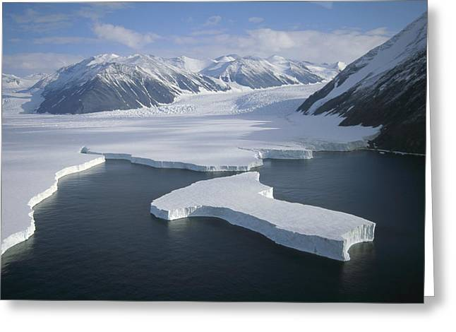 Dugdale and Murray Glaciers Antarctica Greeting Card by Tui DeRoy