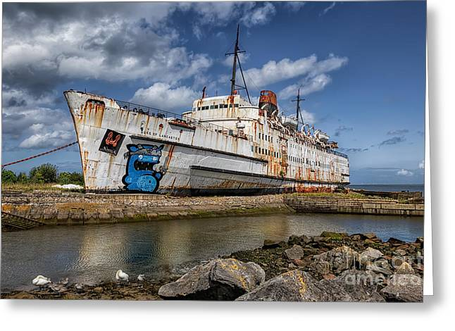 Swans... Digital Art Greeting Cards - Duke of Lancaster  Greeting Card by Adrian Evans