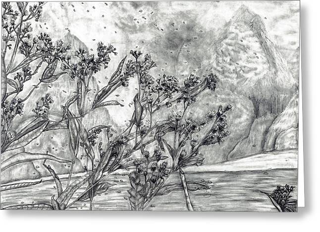 Park Scene Drawings Greeting Cards - Dunbar Cave Clarksville TN Greeting Card by Joy Neasley