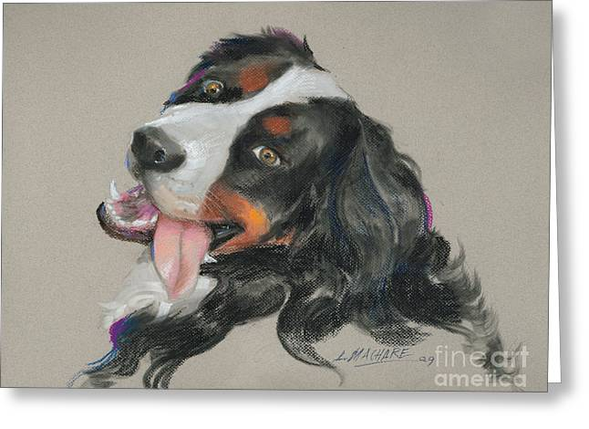 White Dogs Pastels Greeting Cards - Duncan Greeting Card by Mary Machare