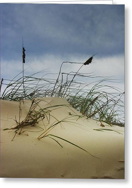 Sand Art Greeting Cards - Dune and Beach Grass Greeting Card by Randall Nyhof