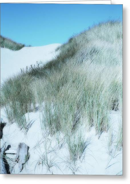 Sanddunes Greeting Cards - Dune Greeting Card by Bonnie Bruno