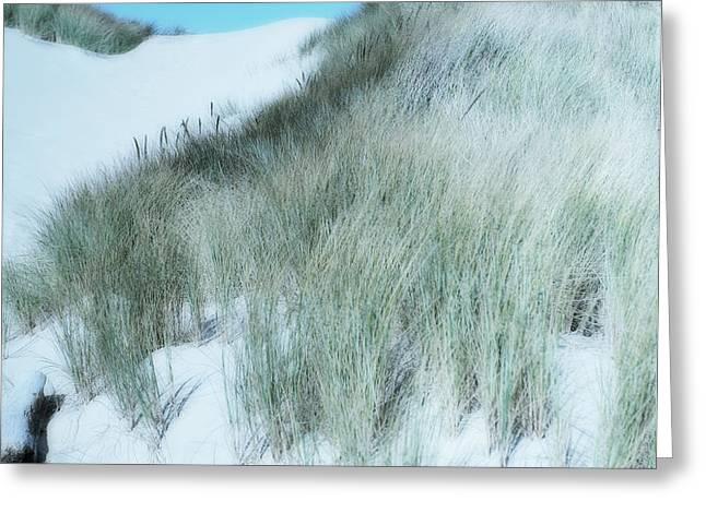 Dune Greeting Card by Bonnie Bruno