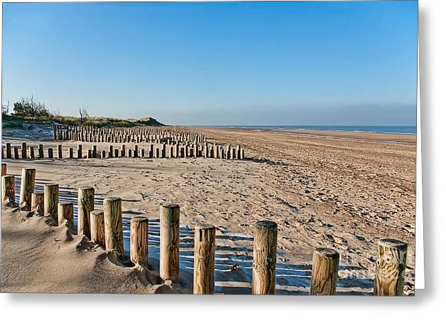 Sunny Beach Waves Greeting Cards - Dune conservation Holme Dunes North Norfolk UK Greeting Card by John Edwards