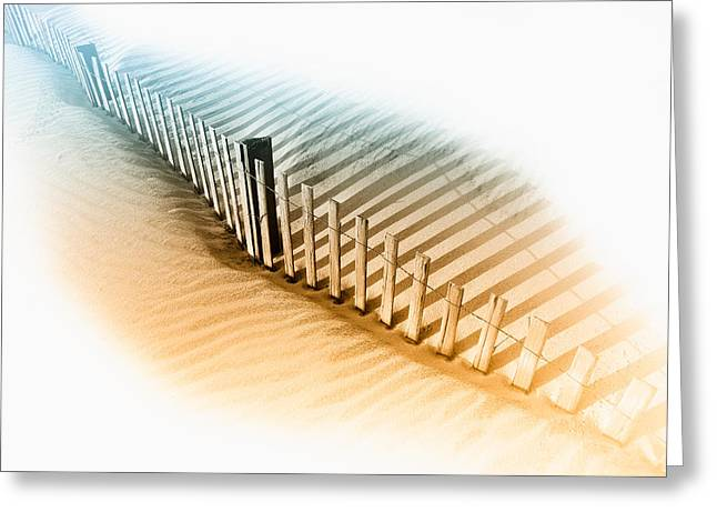 Pea Island Greeting Cards - Dune Fence Greeting Card by Dan Carmichael