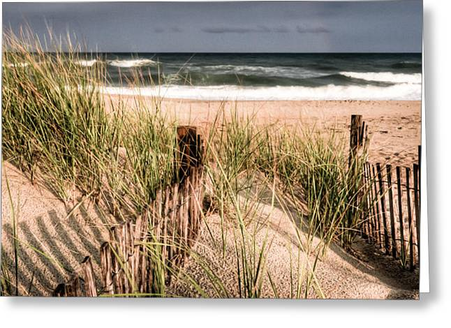 Beachscape Greeting Cards - Dune II Greeting Card by David Hahn